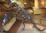 Allosaurus, Kirtland Hall of Prehistoric Life at the Cleveland Museum of Natural History, Cleveland, Ohio.