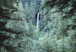 Silver Falls State park in Salem Oregon