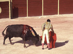 Bullfighting in Mexico the Climax or Faena