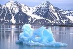 Iceberg in ocean.