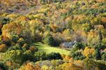Vermont foliage.