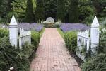 Summer garden gate and brick walkway