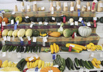 Display of Vegetable Fair winners with their ribbons at County Fair
