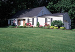 Large grass front yard
