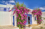 Beautiful island of Mykonos Greece and white buildings and flowers scenic in HDR