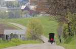 Amish buggy heading home on country road in Ohio