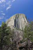 Devils Tower in early morning light.