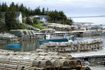 Josephine's Cove, Newfoundland, fishing harbour
