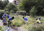Volunteers working at an Urban garden