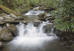 Cascading waterfalls along the Chimney Tops Trail, Great Smoky Mountains National Park, Tenessee / North Carolina