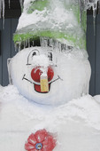 Snowman in the winter