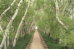 Garden walkway in the gardens at Stan Hywet Mansion in Akron, OHio