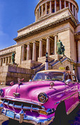 Old Pink Chevy American classic cars in central Havana Cuba near Capitol showing old 50s autos days