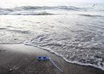 Swim googles in Lake Erie surf