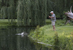 Man trout fishing