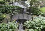Small bridge in a backyard garden