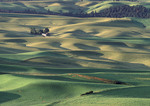 Eastern Washington's farm belt