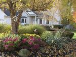 Fall gardens in Northeast, Ohio