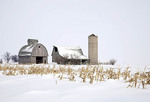Barn buildings and a silo in a snow-covered cornfield under an empty sky in hazy morning light; Lee County, Illinois