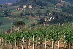 Tuscany Region of Italy