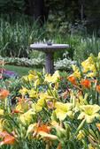 Birdbath among day lilies