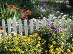 Summer garden with white picket fence