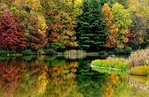 Autumn morning, Big Ditch Lake, Cowen, Webster County, West Virginia, USA