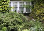 Frontyard garden showing window on home