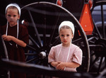 Young Amish girls by a buggy