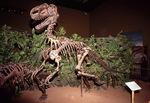 Dinosaur on display at the Dinosaur Center at Thermopolis, Wyoming