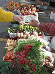 Michigan, Hastings, Farmers Market, local produce, buying and selling