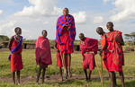 Kenya Masai Mara  Masai warriors doing traditional jumping for tourists  in Masai Mara National Park in reserve