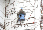 Blue bird house on side of house