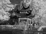 Scenic of beautiful Lake Eola Chinese Pagoda in infrared B&W in downtown center of Orlando Florida