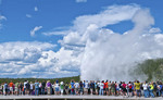 Famous Old Faithful geyser in Yellowstone National Park in Wyoming rising