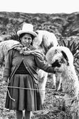 Inca Woman in Costume with Llamas Cuzco Peru