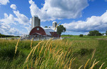 Eau Claire Wisconsin farm and red barn in picturesque scene of farming
