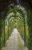 Granada Spain Alhambra famous hedges of Gardens of the Generalife and wonderful green arches and plants