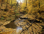 Fall scenic in Northeast Ohio Penitentiary Glenn at lake Metro Parks