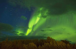Iceland spectatular Northern Lights green in Reykholt Valley in West Iceland sky lights