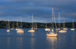 Canada Mahone Bay Nova Scotia marina harbor at sunset with glow from sun on boats