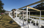 Central Florida Home Organic Garden greenhouse being constructed with beams and plants for healthy eating and diet