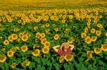 Woman standing in field of sunflowers, near Kathryn, North Dakota, AGPix_0078