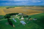 North Dakota farm with combines harvesting wheat in background, near Colgate, North Dakota, AGPix_0088
