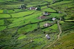 Irish countryside of houses and fields, Ring of Kerry, Near Caherdaniel, County Kerry, Ireland, AGPix_0136