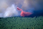 Plane drops slurry on forest fire, forest of ponderosa pine and mixed conifers, Leroux Fire, Kachina Peaks Wilderness Area, Coconino National Forest, Flagstaff, Arizona, AGPix_0164     
