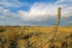 Barbed wire fence and rainbow on the Hitching Post Ranch, Kenton, Cimarron County, Oklahoma, AGPix_0173