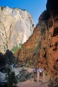 Hikers in Echo Canyon along the East Rim Trail, Zion National Park, Utah,  AGPix_0177    