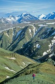 Hiking on tundra, above Sable Pass area of Denali National Park, Alaska, AGPix_0212