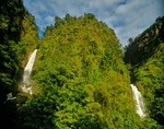 Trafalgar Falls above Roseau, tropical rainforest vegetation, Isle of Dominica, West Indies, AGPix_0228